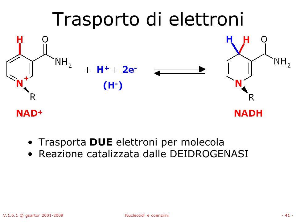 V.1.6.1 © gsartor 2001-2009Nucleotidi e coenzimi- 41 - Trasporto di elettroni Trasporta DUE elettroni per molecola Reazione catalizzata dalle DEIDROGE