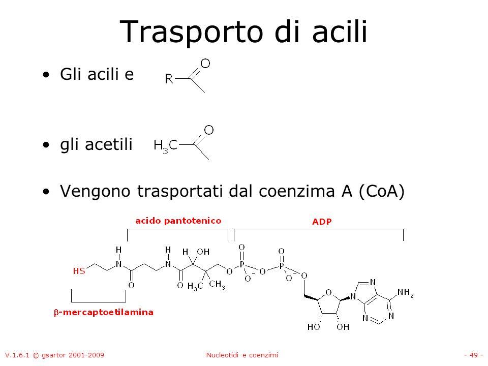 V.1.6.1 © gsartor 2001-2009Nucleotidi e coenzimi- 49 - Trasporto di acili Gli acili e gli acetili Vengono trasportati dal coenzima A (CoA)