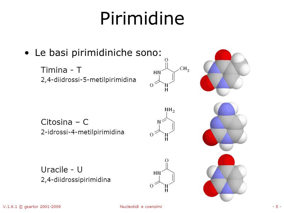 V.1.6.1 © gsartor 2001-2009Nucleotidi e coenzimi- 5 - Pirimidine Le basi pirimidiniche sono: Timina - T 2,4-diidrossi-5-metilpirimidina Citosina – C 2