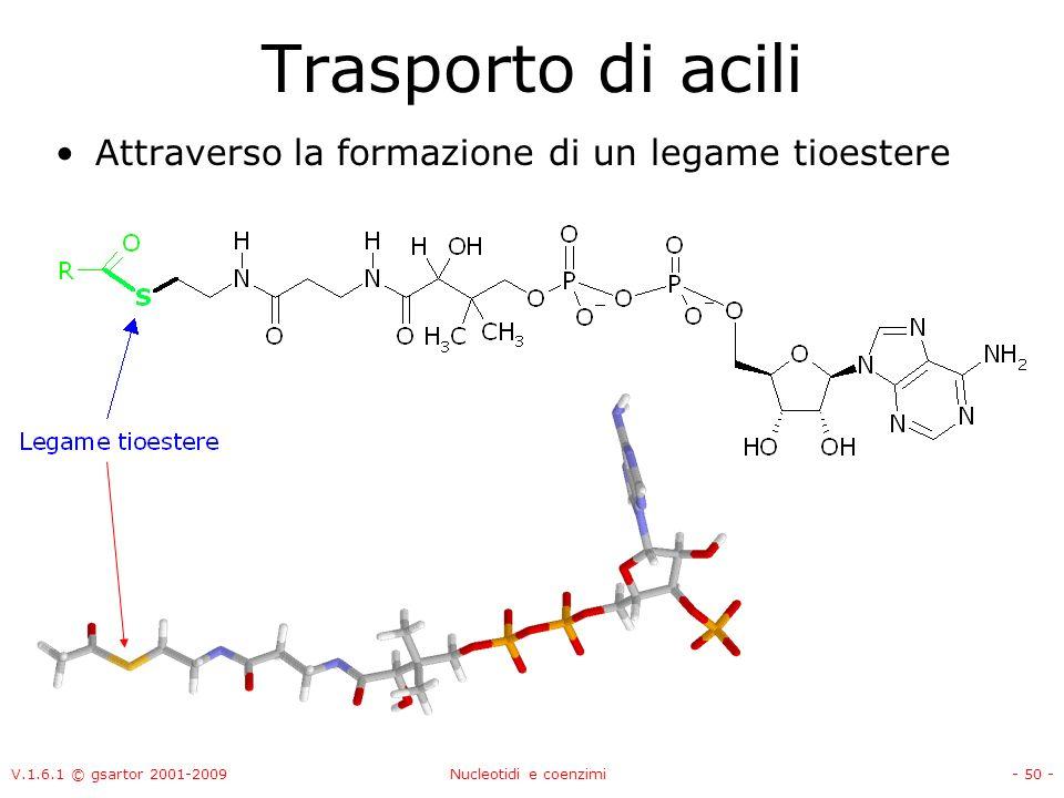 V.1.6.1 © gsartor 2001-2009Nucleotidi e coenzimi- 50 - Trasporto di acili Attraverso la formazione di un legame tioestere