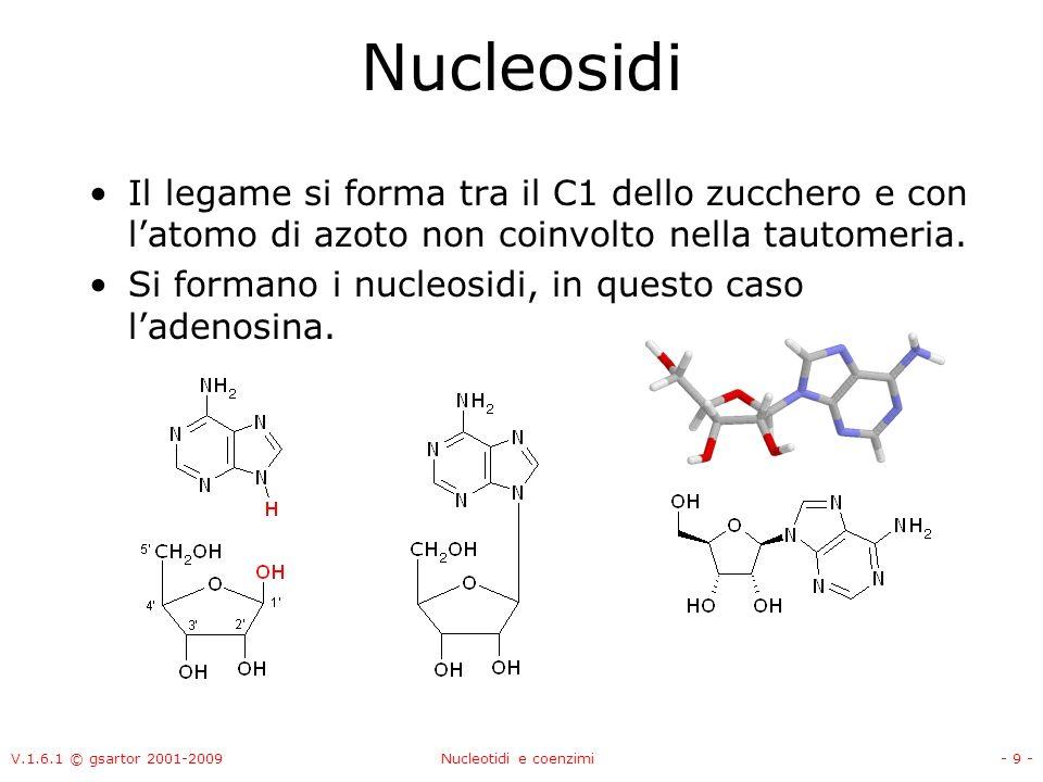 V.1.6.1 © gsartor 2001-2009Nucleotidi e coenzimi- 20 - A cosa servono i nucleotidi Trasporto di energia –ATP (GTP), ADP, AMP, Segnali intracellulari –cAMP Trasporto di equivalenti ridotti –NAD + /NADH, NADP + /NADPH –FAD/FADH 2 Trasporto di acili –CoA …