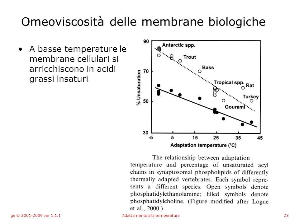 gs © 2001-2009 ver 1.1.1Adattamento alla temperatura23 Omeoviscosità delle membrane biologiche A basse temperature le membrane cellulari si arricchiscono in acidi grassi insaturi