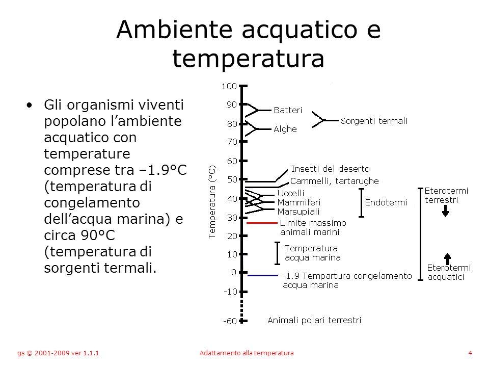 gs © 2001-2009 ver 1.1.1Adattamento alla temperatura4 Ambiente acquatico e temperatura Gli organismi viventi popolano lambiente acquatico con temperature comprese tra –1.9°C (temperatura di congelamento dellacqua marina) e circa 90°C (temperatura di sorgenti termali.