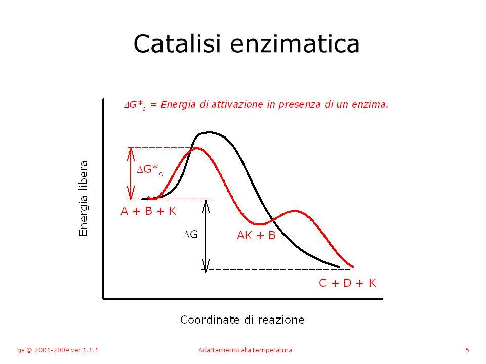 gs © 2001-2009 ver 1.1.1Adattamento alla temperatura16 Acclimatazione Alterazione della via metabolica piuttosto che della singola reazione enzimatica.