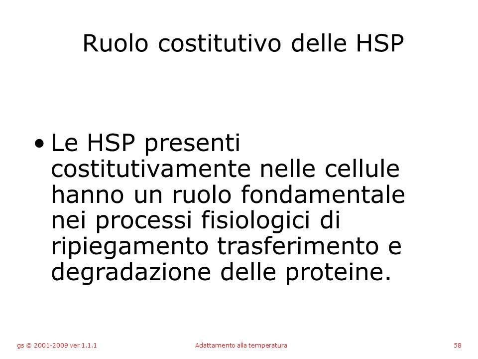 gs © 2001-2009 ver 1.1.1Adattamento alla temperatura58 Ruolo costitutivo delle HSP Le HSP presenti costitutivamente nelle cellule hanno un ruolo fondamentale nei processi fisiologici di ripiegamento trasferimento e degradazione delle proteine.
