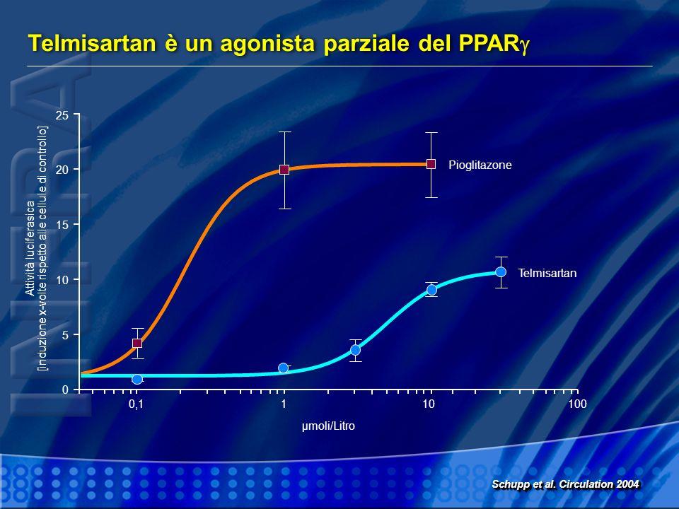 Telmisartan è un agonista parziale del PPAR Schupp et al. Circulation 2004 25 20 15 10 5 0 110100 µmoli/Litro Attività luciferasica [induzione x-volte