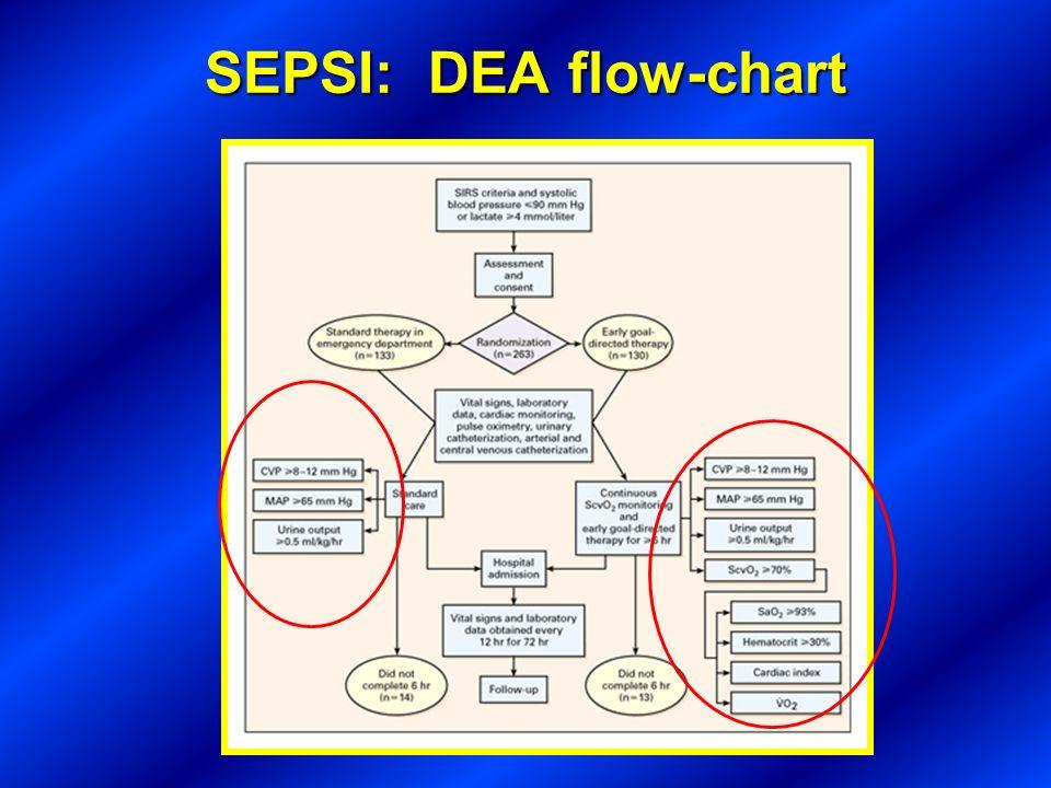 SEPSI: DEA flow-chart