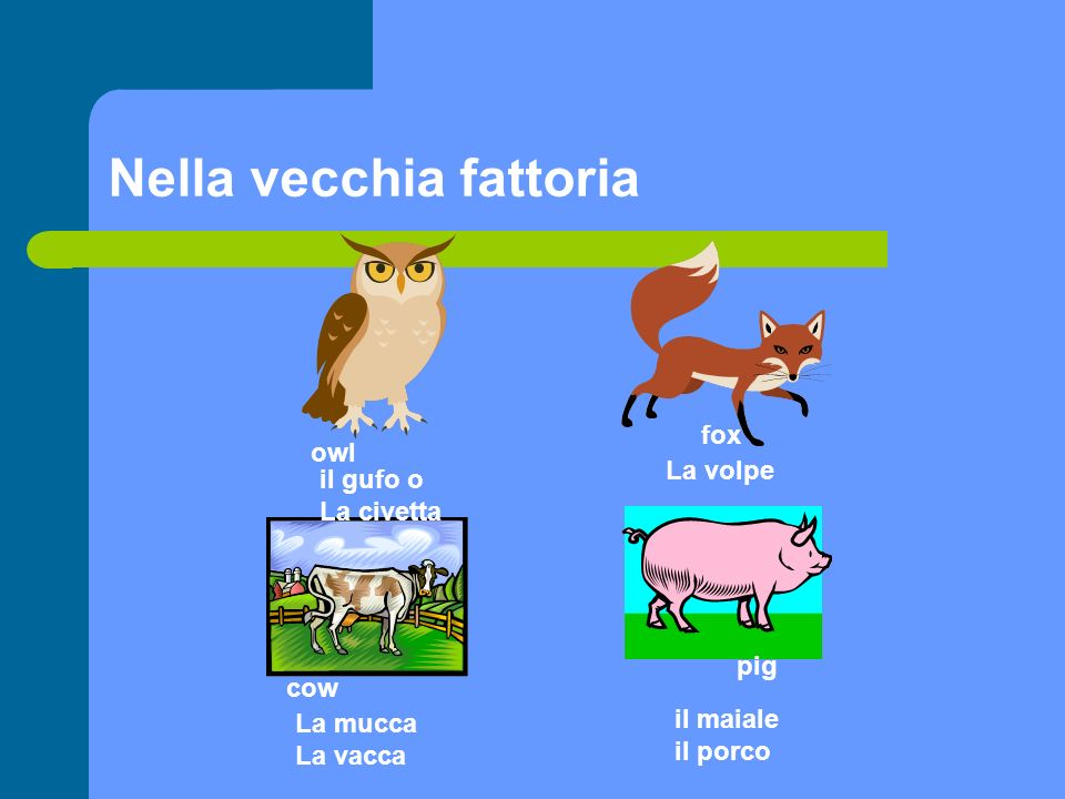 Nella vecchia fattoria goat La capra sheep La pecora Cart Il carrello lamb mouse Il topo – il topolino