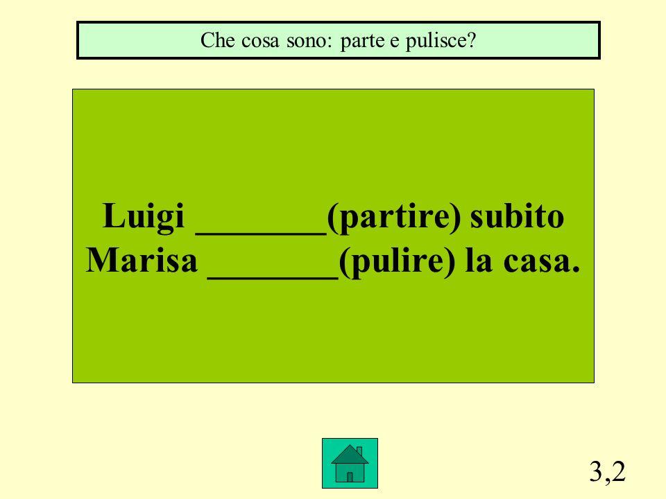 3,2 Luigi _______(partire) subito Marisa _______(pulire) la casa. Che cosa sono: parte e pulisce?