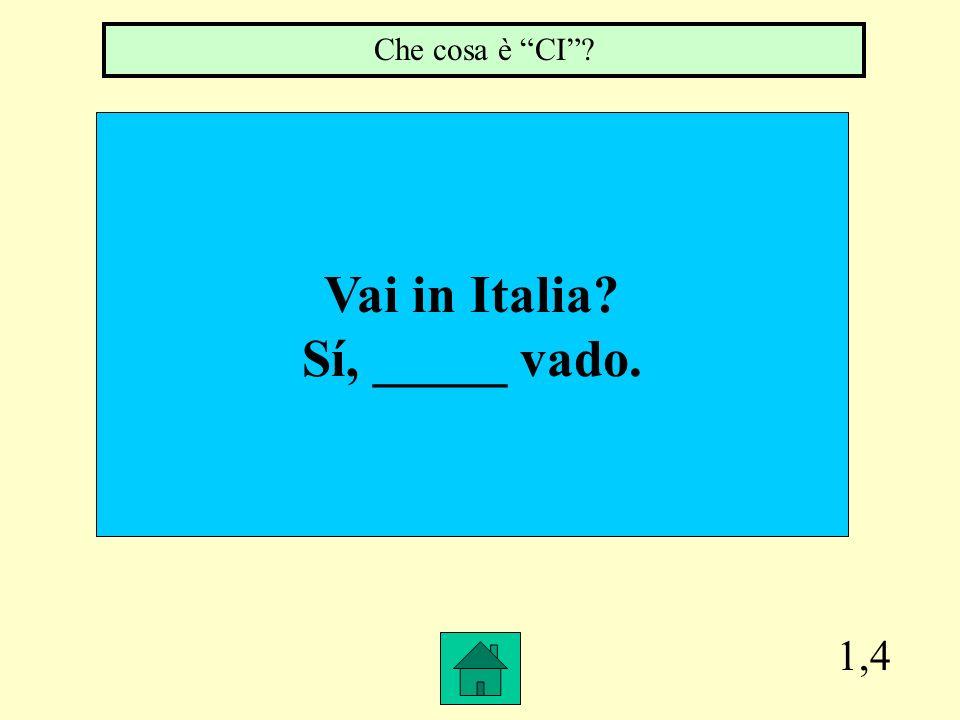 1,4 Vai in Italia? Sí, _____ vado. Che cosa è CI?