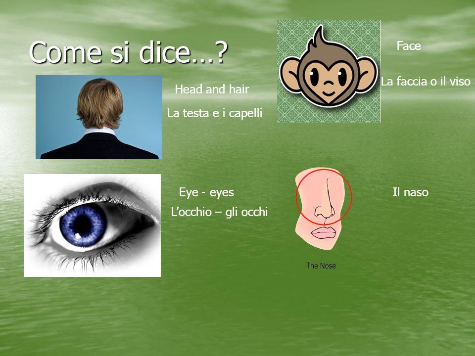 Come si dice…? Head and hair La testa e i capelli Face La faccia o il viso Eye - eyes Locchio – gli occhi Il naso