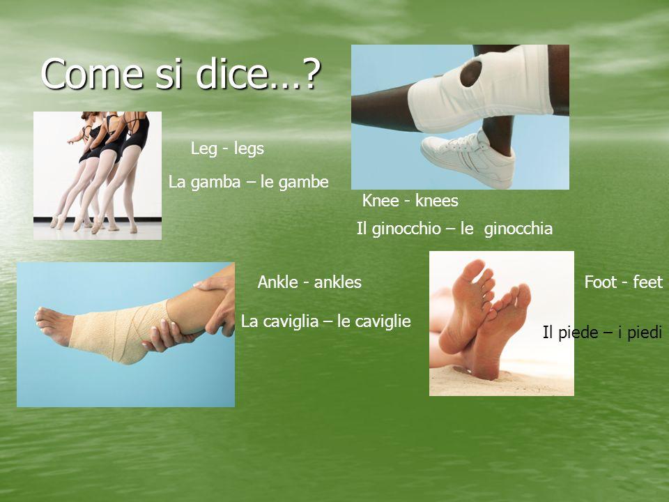 Come si dice…? Leg - legs La gamba – le gambe Knee - knees Il ginocchio – le ginocchia Ankle - ankles La caviglia – le caviglie Foot - feet Il piede –