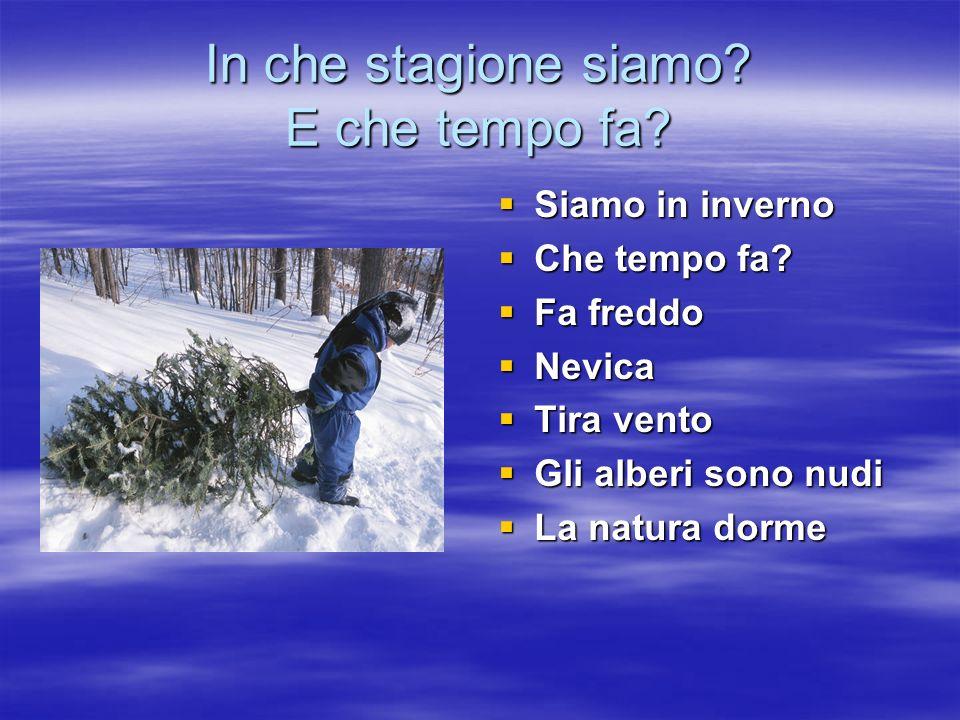 In che stagione siamo? E che tempo fa? Siamo in inverno Siamo in inverno Che tempo fa? Che tempo fa? Fa freddo Fa freddo Nevica Nevica Tira vento Tira