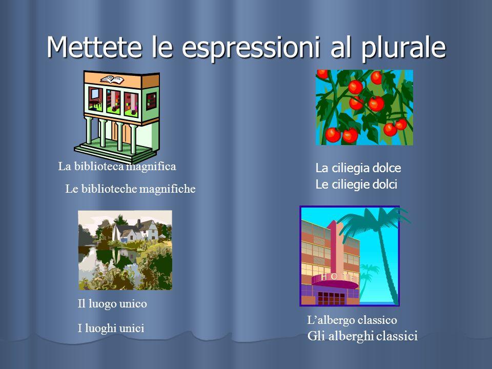 Mettete le espressioni al plurale La biblioteca magnifica Le biblioteche magnifiche La ciliegia dolce Le ciliegie dolci Il luogo unico I luoghi unici