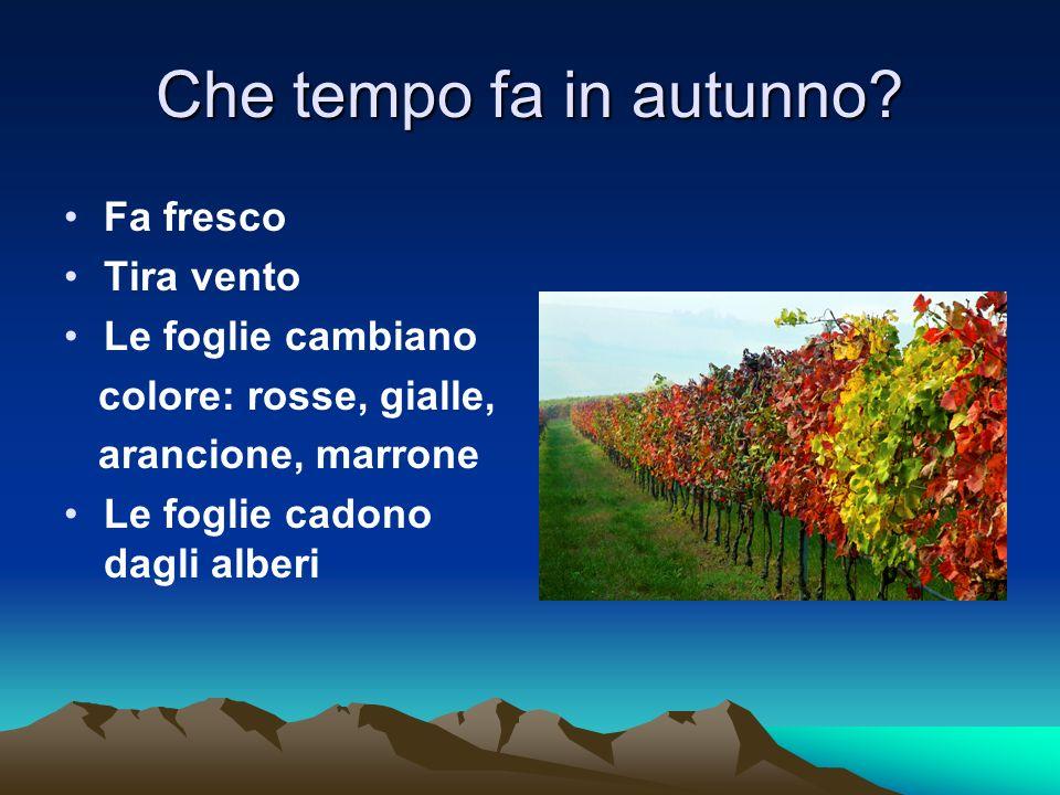 Che tempo fa in autunno? Fa fresco Tira vento Le foglie cambiano colore: rosse, gialle, arancione, marrone Le foglie cadono dagli alberi
