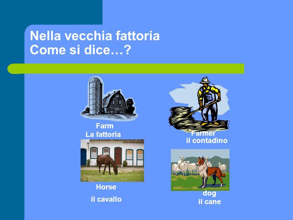 Nella vecchia fattoria Come si dice…? Farm Farmer La fattoria il contadino Horse il cavallo il cane dog