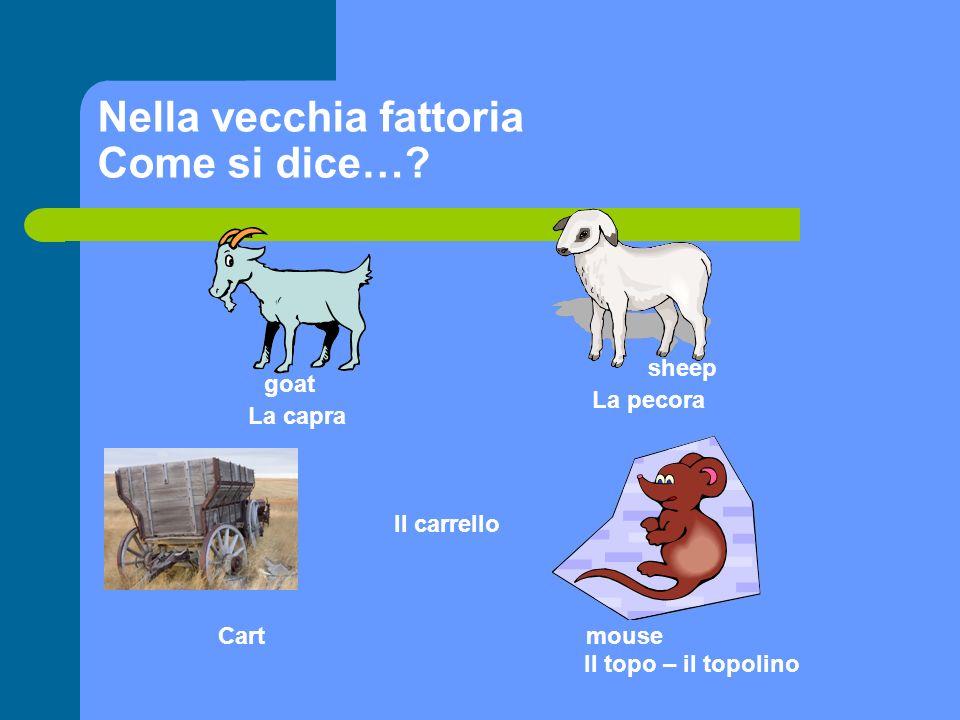 Nella vecchia fattoria Come si dice…? goat La capra sheep La pecora Cart Il carrello mouse Il topo – il topolino