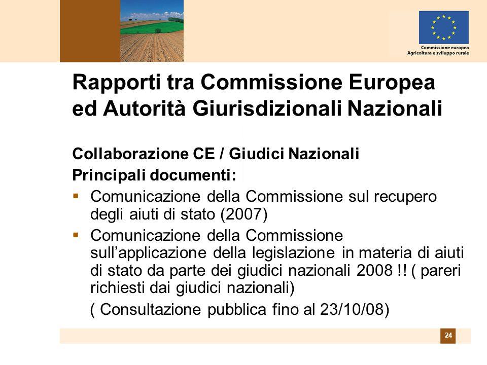24 Rapporti tra Commissione Europea ed Autorità Giurisdizionali Nazionali Collaborazione CE / Giudici Nazionali Principali documenti: Comunicazione della Commissione sul recupero degli aiuti di stato (2007) Comunicazione della Commissione sullapplicazione della legislazione in materia di aiuti di stato da parte dei giudici nazionali 2008 !.