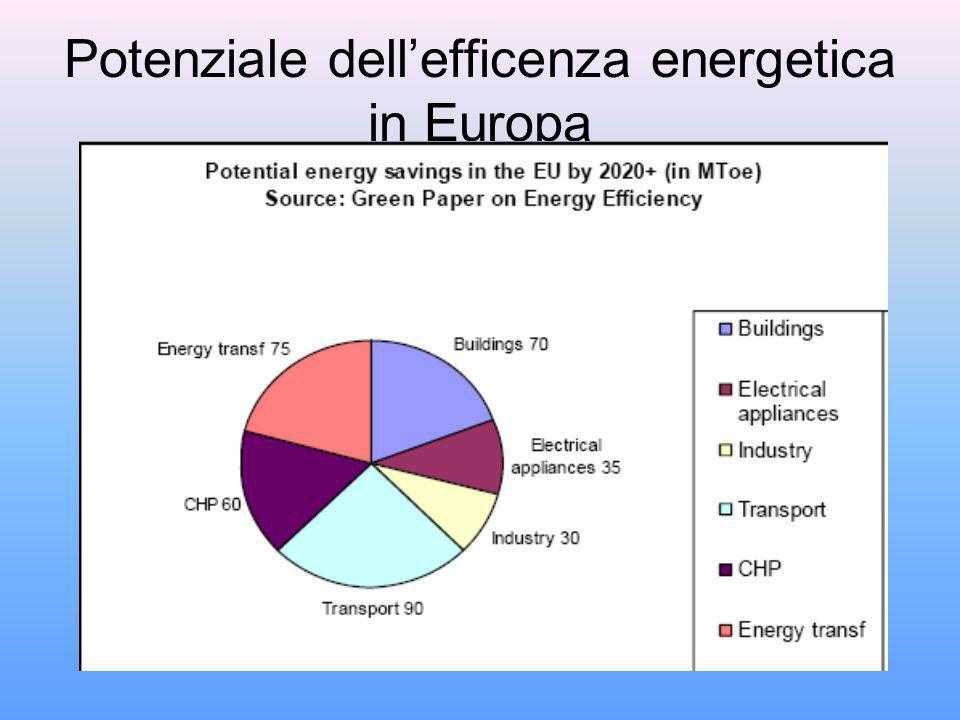 Potenziale dellefficenza energetica in Europa