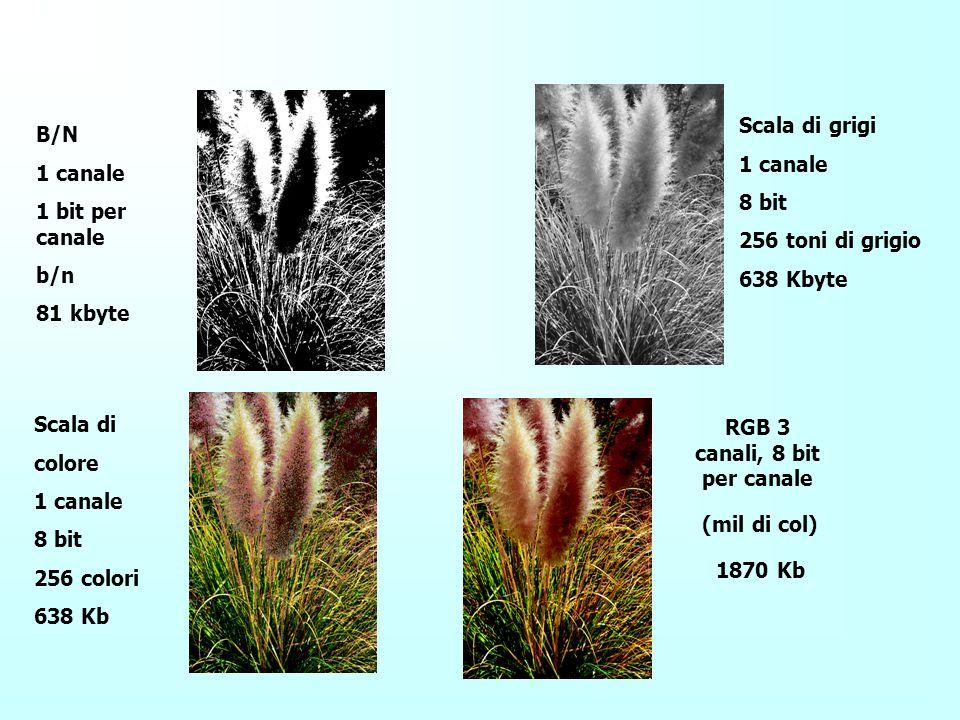 Profondità di colore Poiché si utilizzano 3 byte per rappresentare ogni pixel, queste immagini vengono definite a 24 bit Una immagine a colori di 100x