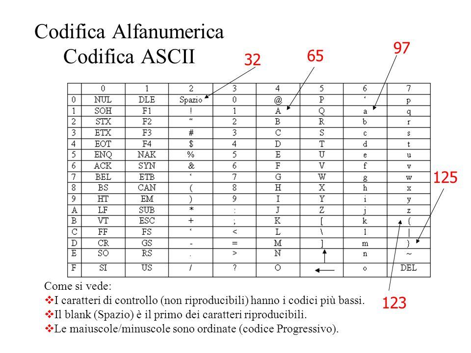 2.Codici Alfanumerici L'evoluzione dei calcolatori li ha portati a diventare, oltre che elaboratori di numeri, anche elaboratori di altri tipi di info