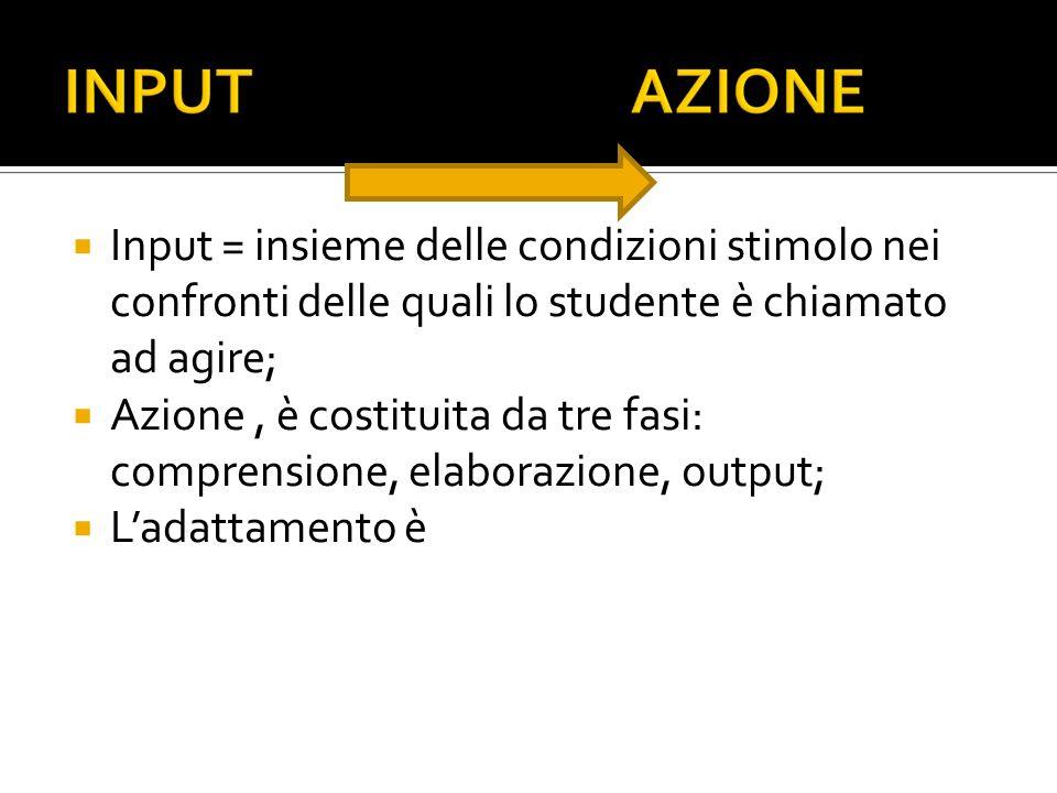 Input = insieme delle condizioni stimolo nei confronti delle quali lo studente è chiamato ad agire; Azione, è costituita da tre fasi: comprensione, elaborazione, output; Ladattamento è