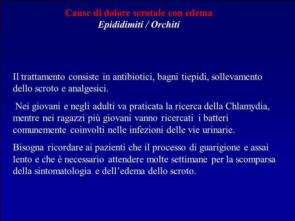 Cause di dolore scrotale con edema Epididimiti / Orchiti Il trattamento consiste in antibiotici, bagni tiepidi, sollevamento dello scroto e analgesici