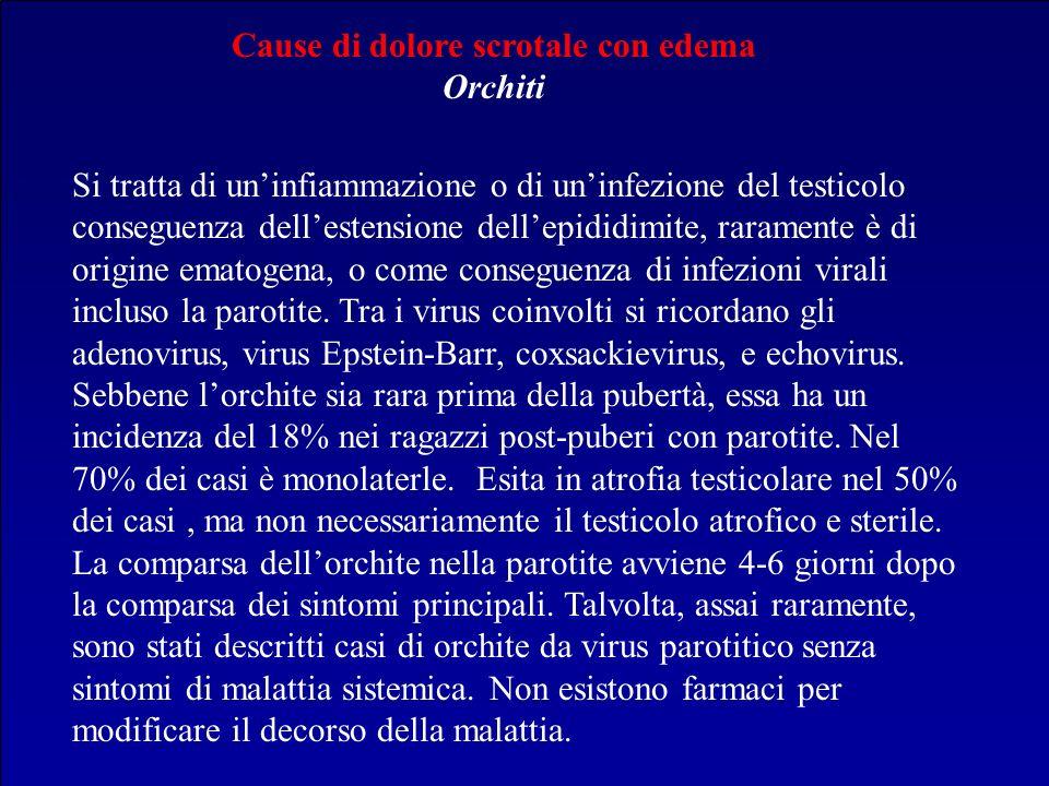 Cause di dolore scrotale con edema Orchiti Si tratta di uninfiammazione o di uninfezione del testicolo conseguenza dellestensione dellepididimite, rar