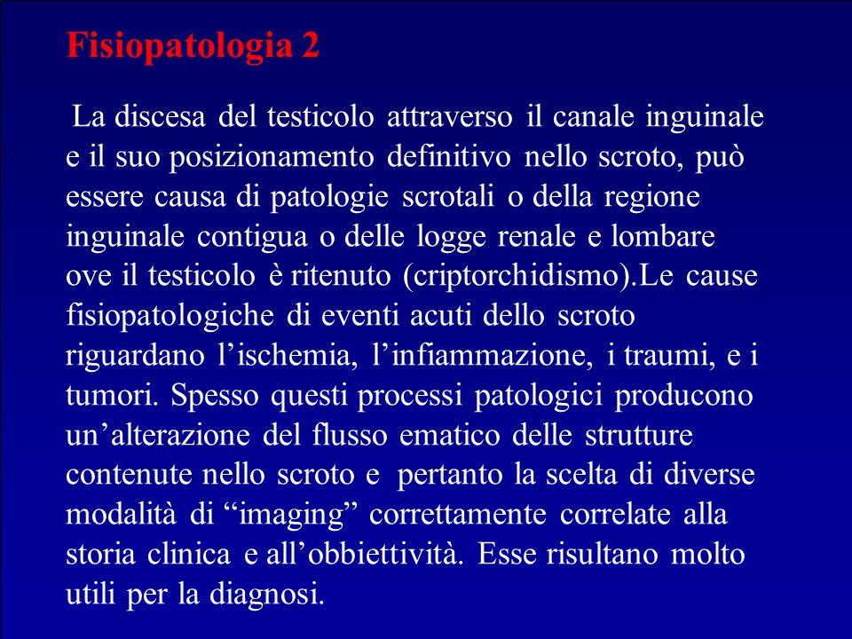 Fisiopatologia 2 La discesa del testicolo attraverso il canale inguinale e il suo posizionamento definitivo nello scroto, può essere causa di patologi