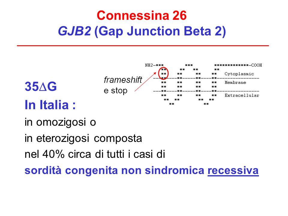 35 G In Italia : in omozigosi o in eterozigosi composta nel 40% circa di tutti i casi di sordità congenita non sindromica recessiva Connessina 26 GJB2