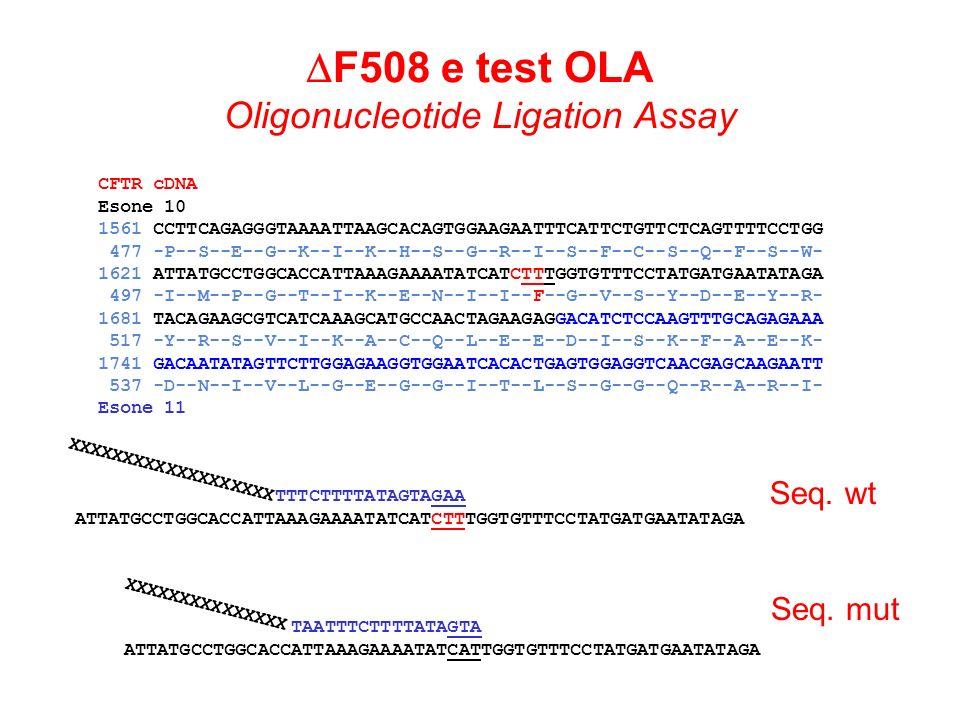 CFTR cDNA Esone 10 1561 CCTTCAGAGGGTAAAATTAAGCACAGTGGAAGAATTTCATTCTGTTCTCAGTTTTCCTGG 477 -P--S--E--G--K--I--K--H--S--G--R--I--S--F--C--S--Q--F--S--W-