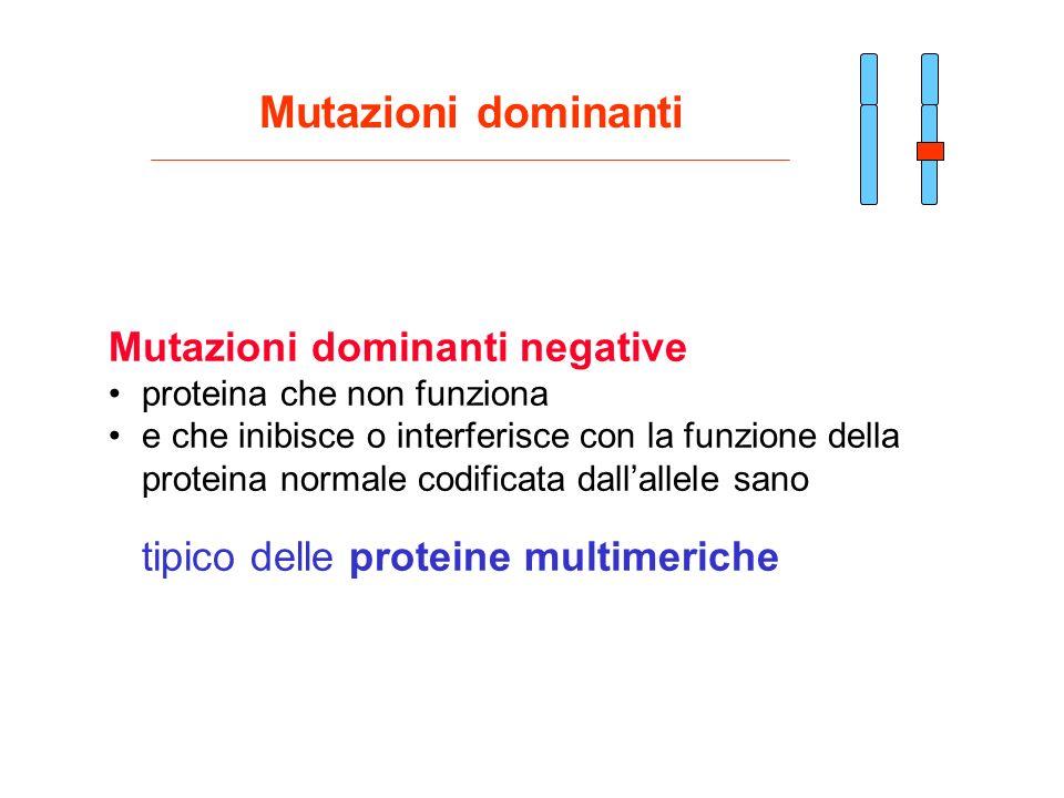 Mutazioni dominanti negative proteina che non funziona e che inibisce o interferisce con la funzione della proteina normale codificata dallallele sano