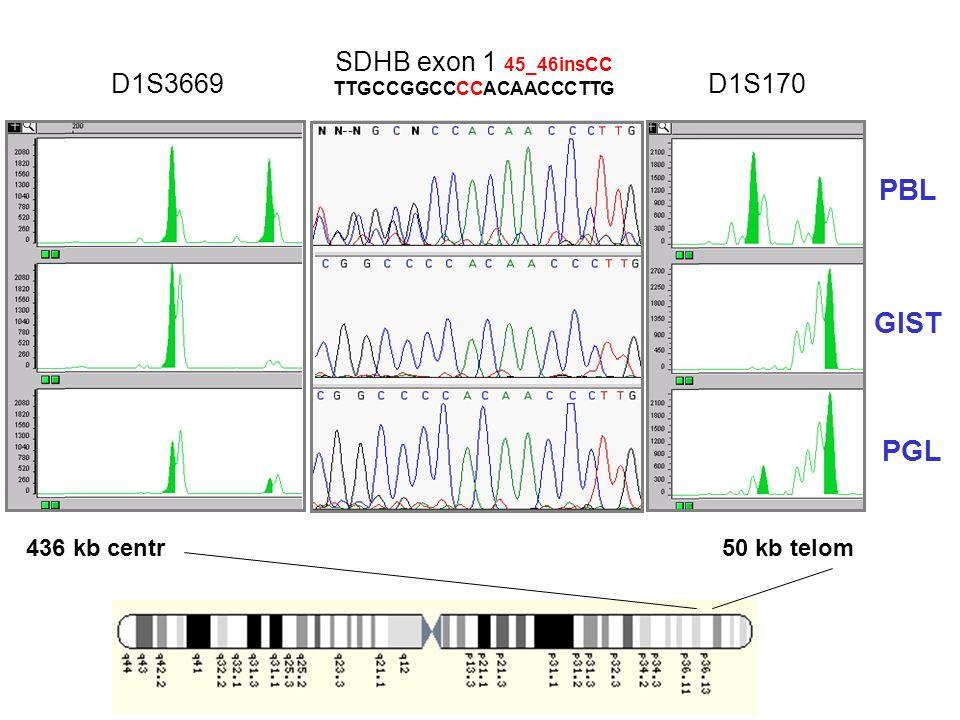 D1S3669D1S170 SDHB exon 1 45_46insCC TTGCCGGCCCCACAACCCTTG PBL GIST PGL 50 kb telom436 kb centr