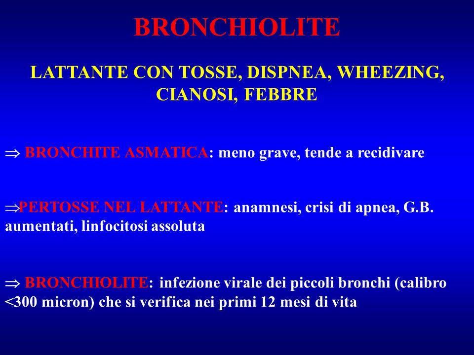 EZIOLOGIA VRS: 50% di tutte le bronchioliti sierotipi A più patogeno e frequente B ADENOVIRUS PARAINFLUENZALI A e B RHINOVIRUS PARAMIXOVIRUS (parotite) MIXOVIRUS (morbillo) VIRUS INFLUENZALE CLAMIDIA e MICOPLASMA: 5-10%