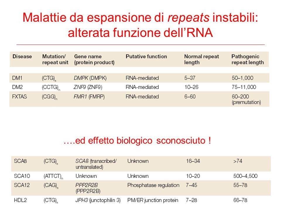 Malattie da espansione di repeats instabili: alterata funzione dellRNA ….ed effetto biologico sconosciuto !