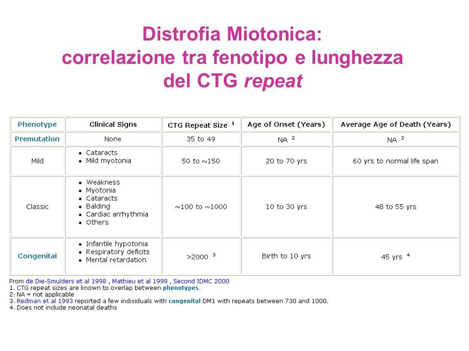 Distrofia Miotonica: correlazione tra fenotipo e lunghezza del CTG repeat