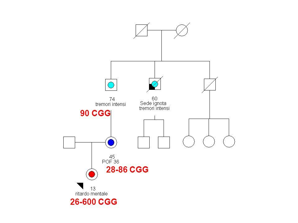 90 CGG 28-86 CGG 26-600 CGG