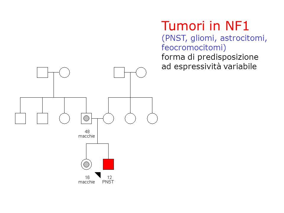 Tumori in NF1 (PNST, gliomi, astrocitomi, feocromocitomi) forma di predisposizione ad espressività variabile