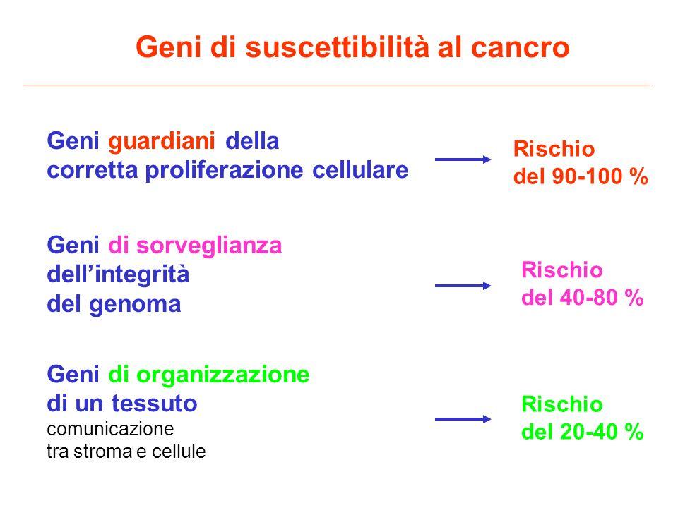Tumori in NF2 (schwannomi, meningiomi, astrocitomi, gliomi, ependimomi)