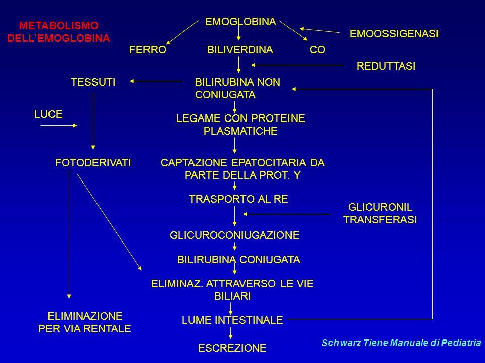 EPIDEMIOLOGIA DELLITTERO NEONATALE Numerosi fattori danno luogo ad aumento o diminuzione dei livelli di bilirubinemia: Fattori associati allaumento : - razza: Orientali, Greci, Indiani dAmerica - materni: diabete, ipertensione, uso di contraccettivi al momento del concepimento, farmaci (Diazepam, Ossitocina), anestesia epidurale - travaglio e parto: PROM, estrazione con ventosa - neonato: basso peso alla nascita, prematurità, infezione, aumentata perdita di peso dopo la nascita, ritardo nellemissione di meconio, ritardo nel clampaggio del cordone Fattori associati alla diminuzione : - razza: Nera - materni: fumo, alcool, farmaci (Fenobarbital, Aspirina, Eroina, Fenitoina) Nessuna associazione con i livelli di bilirubina : - materni: parità - farmaci: beta-adrenergici - travaglio e parto: sofferenza fetale, basso indice di Apgar Gordon Avery Neonatologia