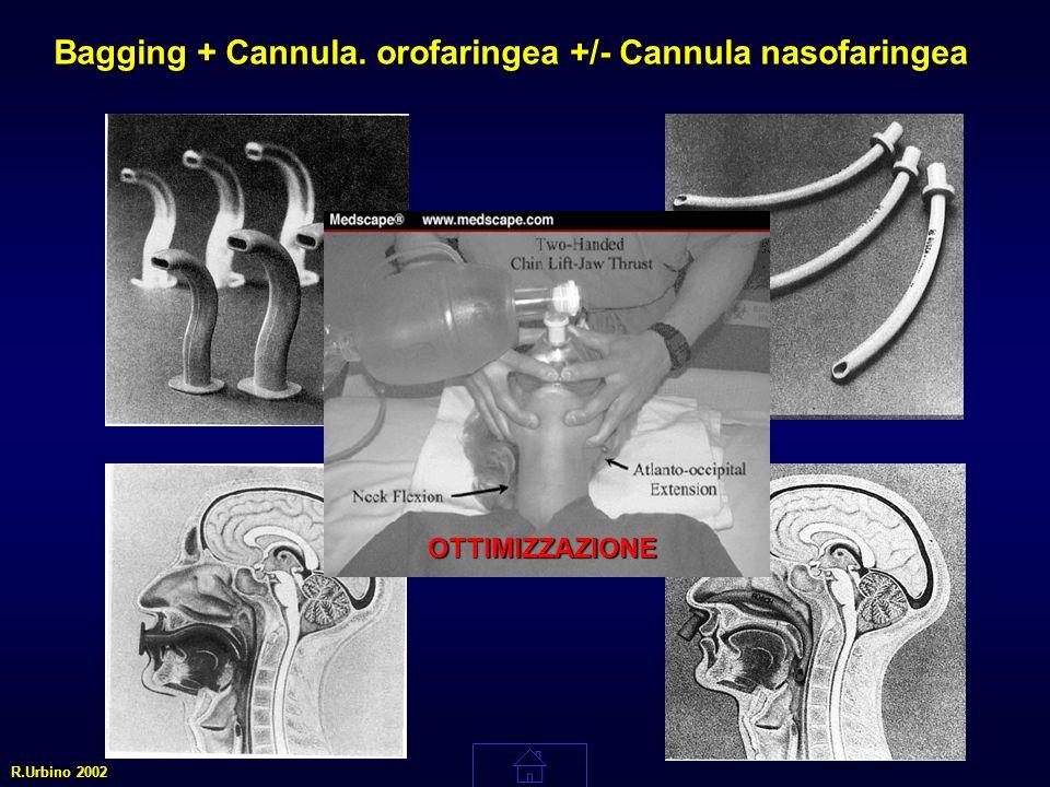 + Bagging + Cannula. orofaringea +/- Cannula nasofaringea R.Urbino 2002 OTTIMIZZAZIONE