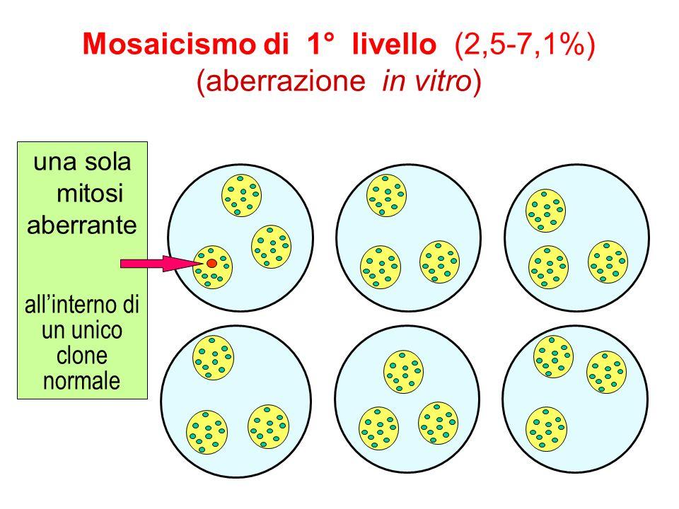 Mosaicismo di 1° livello (2,5-7,1%) (aberrazione in vitro) una sola mitosi aberrante allinterno di un unico clone normale