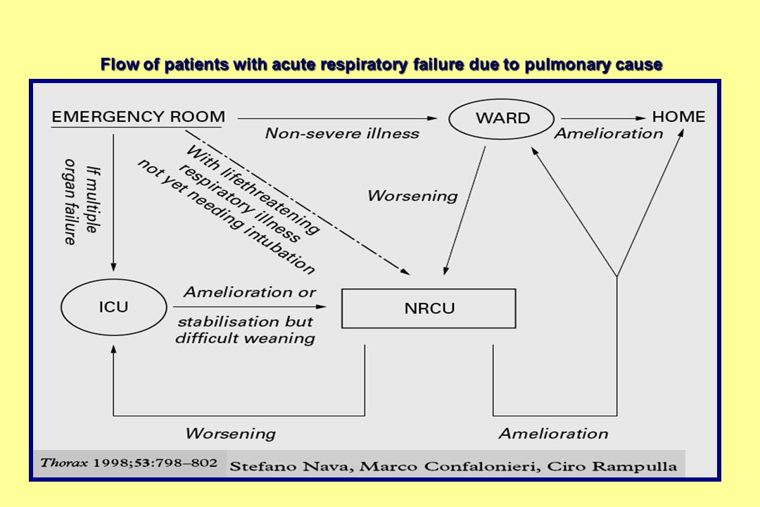 Flow of patients with acute respiratory failure due to pulmonary cause