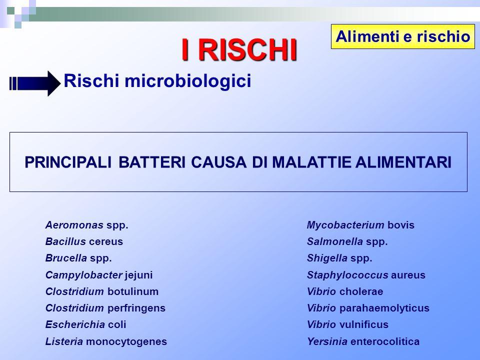 PRINCIPALI BATTERI CAUSA DI MALATTIE ALIMENTARI Aeromonas spp. Bacillus cereus Brucella spp. Campylobacter jejuni Clostridium botulinum Clostridium pe