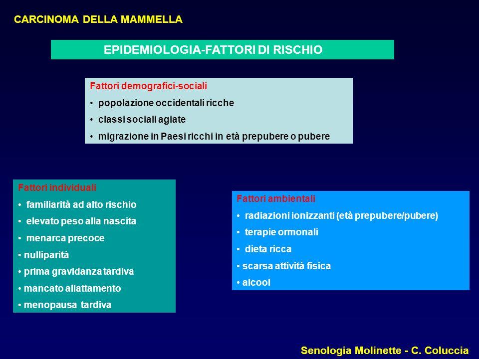 CARCINOMA DELLA MAMMELLA Senologia Molinette - C.Coluccia MOTIVAZIONI D.A.