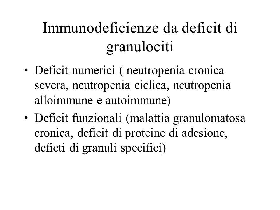 Immunodeficienze da deficit di granulociti Deficit numerici ( neutropenia cronica severa, neutropenia ciclica, neutropenia alloimmune e autoimmune) De