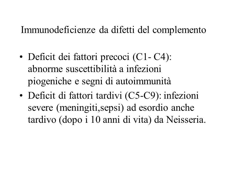 Immunodeficienze da difetti del complemento Deficit dei fattori precoci (C1- C4): abnorme suscettibilità a infezioni piogeniche e segni di autoimmunit