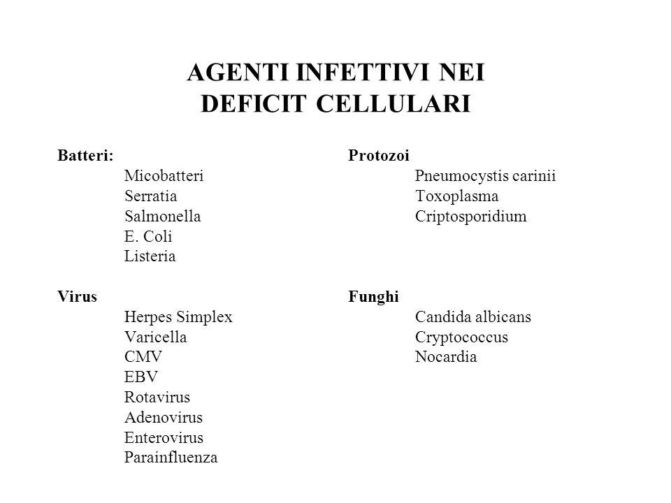 Indagini diagnostiche sospetto deficit dellimmunità cellulare Test di screening: Numero di linfociti circolanti Sottopolazioni linfocitarie Test cutanei di ipersensibilità ritardata (tetano,candidina….) Ulteriori indagini: Risposta proliferativa in virto ai mitogeni e antigeni Risposta proiferativa a cellule allogeniche (coltura mista linfocitaria) Markers di attivazione su linfociti B e T e molecole costimolatorie Produzione di citochine Attività citotossica antigene specifica Effetto helper e suppressor in sistemi di cocoltura cellulare Rx ombra timica Tipizzazione HLA Cariotipo Ricerche enzimatiche (ADA e NP) Biopsia linfonodale Indagini molecolari (PCR e western blott) Indagini genetiche
