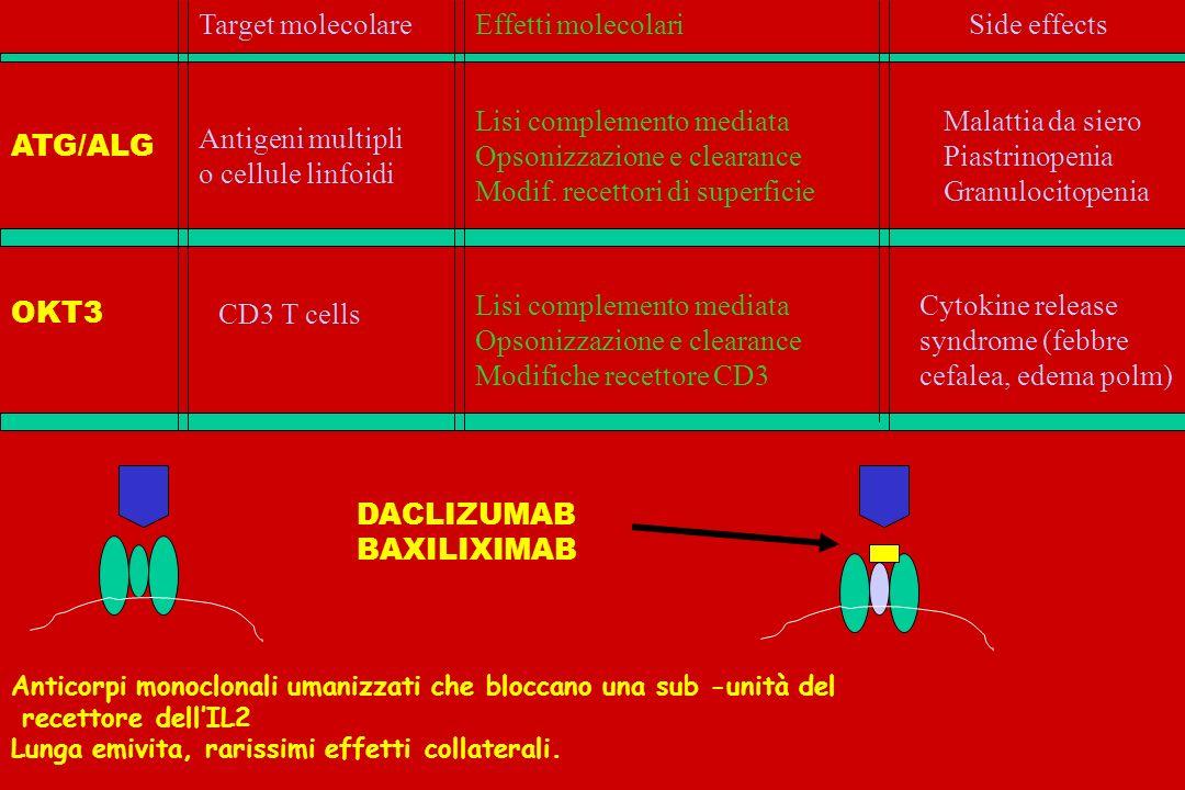 SIERO ANTILINFOCITARIO ALG SIERO ANTITIMOCITICO ATG MONOCLONALI OKT3 DACLIZUMAB BASILIXIMAB STEROIDI AZATIOPRINA CICLOSPORINA MICOFENOLATO TACROLIMUS