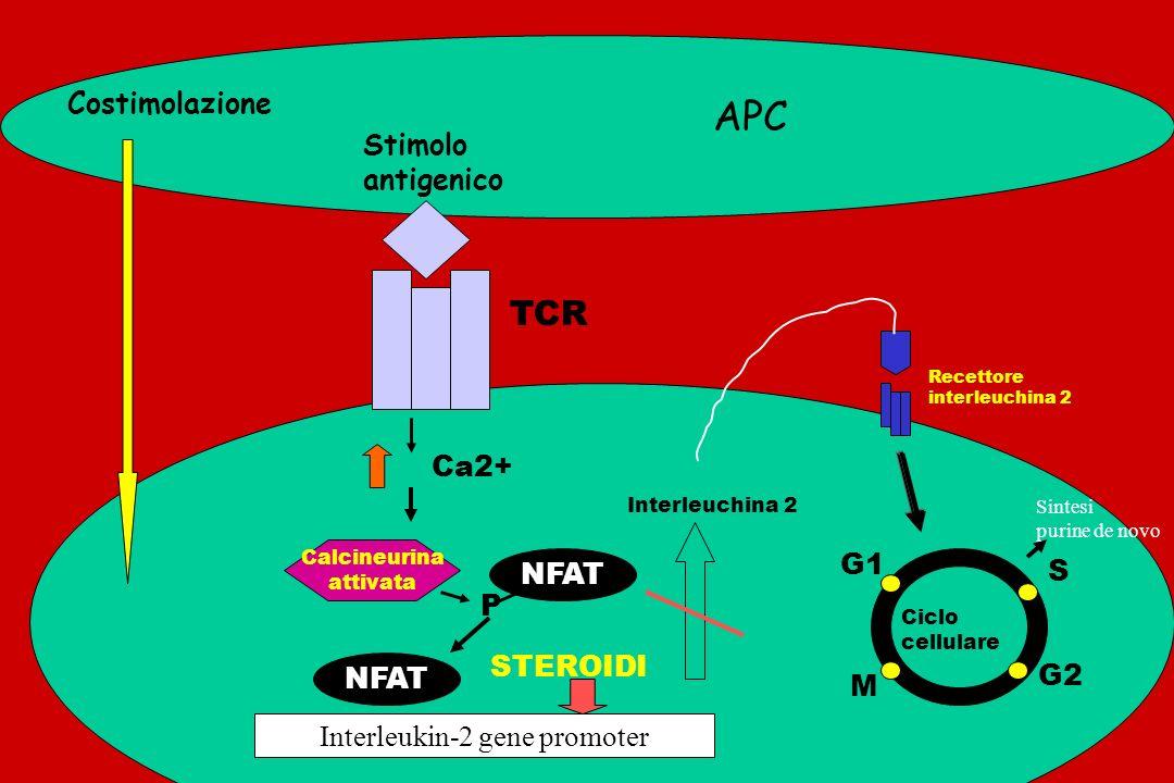 ATG/ALG Target molecolare Antigeni multipli o cellule linfoidi Effetti molecolari Lisi complemento mediata Opsonizzazione e clearance Modif. recettori